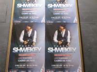 גלריה: יעקב שוואקי בסבב הופעות באירופה 9
