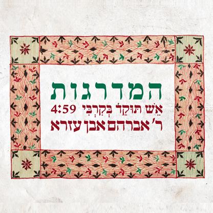 cover_המדרגות_17855