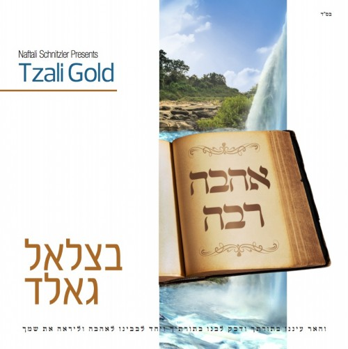 Tzaly-cover-500x501