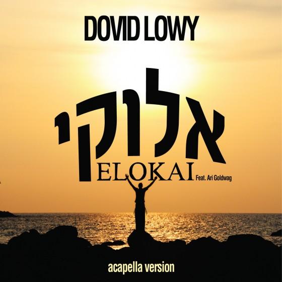 Dovid Lowy - Elokai Acapella Single