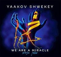 מאמין בניסים: קבלו טעימה מהאלבום החדש של יעקב שוואקי 9