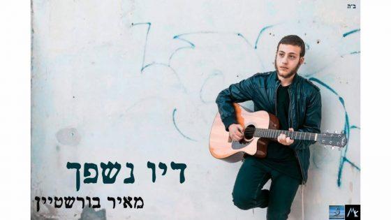 """מאיר בורשטיין בסינגל חדש: """"דיו נישפך"""" 1"""