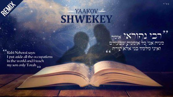 החידוש של רבי נהוראי: שוואקי ברימיקס לשיר ישן 1