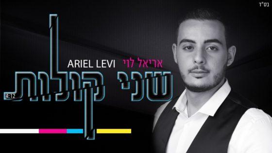"""הזמר והפייטן אריאל לוי בסינגל בכורה: """"שני קולות"""" 2"""