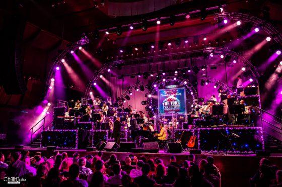 """הצלם חיים טויטו מגיש: קונצרט """"האסק 33"""" • גלריה נוצצת 32"""