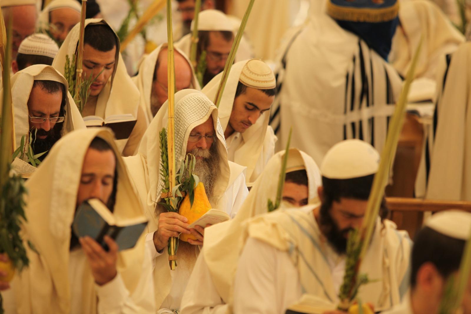 'אֹם אֲנִי חוֹמָה' - ישיבת רועה ישראל שרים הושענא 9